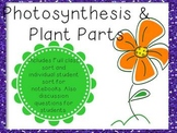Photosynthesis Sort
