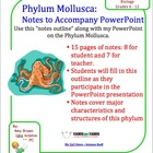 Phylum Mollusca (Mollusk, Clam) Notes to accompany Powerpoint