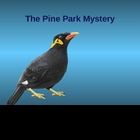 Pine Park Mystery Power Point