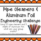 Pipe Cleaners & Foil: Engineering Challenge Project ~ Grea