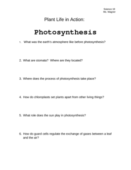 Printables Photosynthesis Worksheet photosynthesis worksheet answers davezan photosynthesis