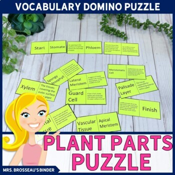 Plant Parts Domino Puzzle - Biology Puzzle by Mrs Brosseau's