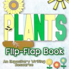 Plants Flip-Flap Book - The Life Cycle of a Sunflower