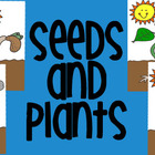 Plants & Seeds Clipart