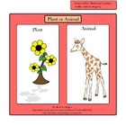 Plants or Animals!  (Classifying  Plants & Animals)