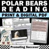 Winter Polar Bears Nonfiction Text Reading Comprehension A