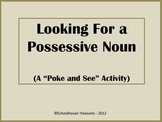 Possessive Nouns - (A Poke and See Activity)