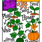 Pumpkin Life Cycle {Creative Clips Digital Clipart}