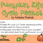 Pumpkin Life Cycle Packet