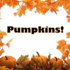 Pumpkins! PPT