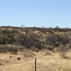 Rangeland pictures of Southern Africa Namibia set 1