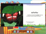 Reading - Butterflies