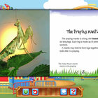 Reading - Praying Mantises