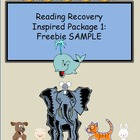 Reading Recovery Inspired SAMPLE: Package #1