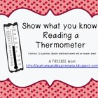 Reading Temperature Freebie