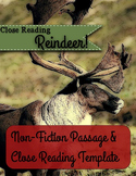 Reindeer Close Reading Bundle Step-by-Step Template & Passage