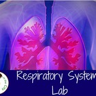 Respiratory System Lab and Notes