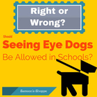 Right or Wrong? Seeing Eye to Dog