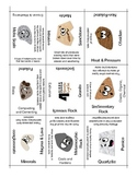 Rock Cycle Vocabulary Puzzle, 4 Sided Review Puzzle