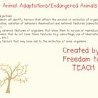 STEM: Animal Adaptation/ Endangered Animals Smartboard Unit