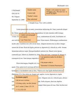 mla style literature review conducting writing libguides at here are the basics for formatting your essays - Example Of A Mla Essay