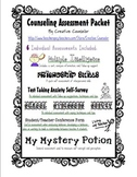 School Counselor Student Assessment Variety Pack
