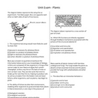 Science Unit Exam - Plants (9 - 12)