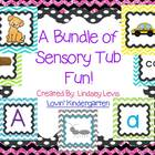 Sensory Tub Activities {BUNDLE}