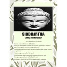 Siddhartha Unit Printables & More-Lecture,Discussion Qs,Wr