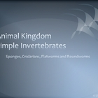 Simple Invertebrates PowerPoint Presentation Lesson Plan