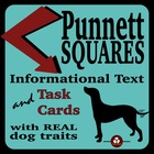 Single Trait Punnett Squares Complete Teaching Packet with