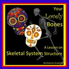 Skeletal System Structure Lesson Plan