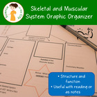 Skeletal and Muscular System Notes Graphic Organizer