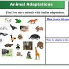 Smartboard Animal Lessons:  Ecosystems, Adaptations, and F