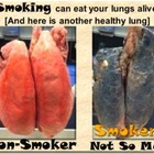 Smoking Opportunity Cost