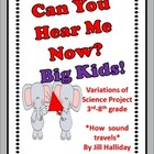 Science Fair Project - Sound Waves - Big Kid version!