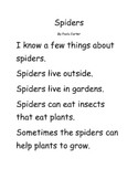 Spiders Early Reader
