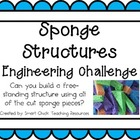 Sponge Structures: Engineering Challenge Project ~ Great S