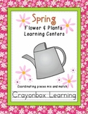 Spring Plants & Flowers - Life Cycle of Plants - Learning