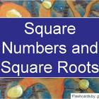 Square Numbers and Roots - Electronic Flashcards