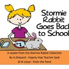 Stormie Rabbit Goes Back to School{A Back to School Reader}
