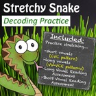 Stretchy Snake Decoding Packet