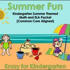 Summer Fun Math and ELA Packet