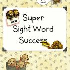 Super Sight Words Success