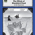 A Guide for Using The Witch of Blackbird Pond in the Class