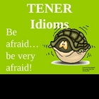 TENER Idioms - PowerPoint Lesson and Practice
