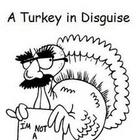 Thanksgiving - A Turkey in Disguise Emergent Reader