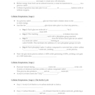 The All Inclusive Photosynthesis/C.R. Powerpoint- Study Guide