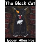 The Black Cat Powerpoint Summary and Comprehension