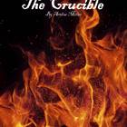 The Crucible Literature Guide: Common Core Aligned Teaching Guide